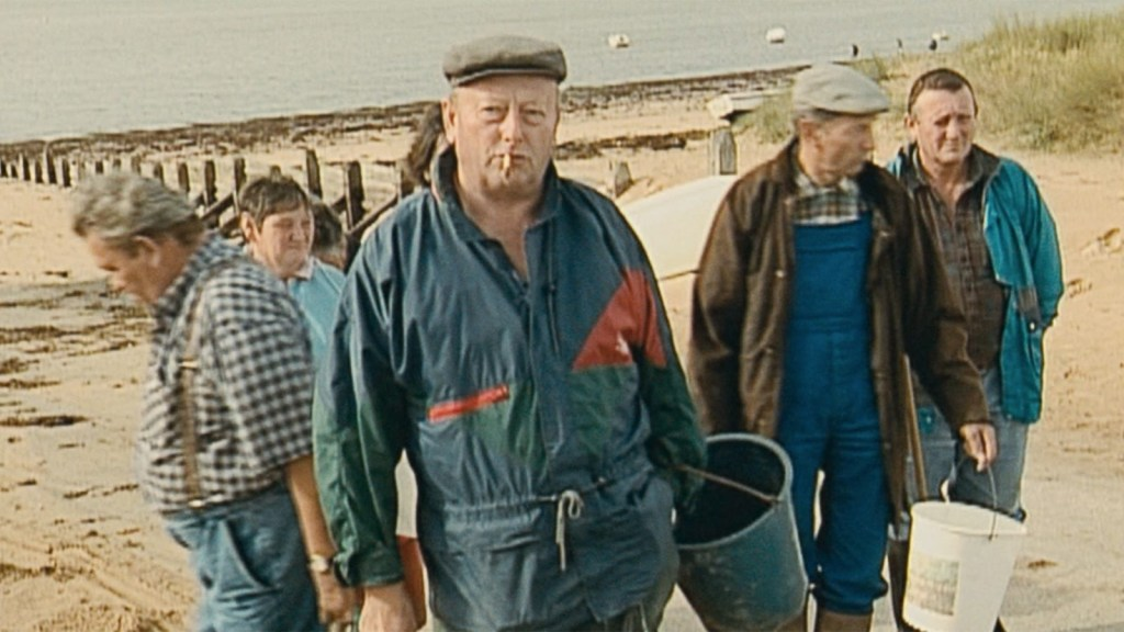 This is a film still from THE GLEANERS & I (2000), screening at Catford Mews today (01 JULY 2021).