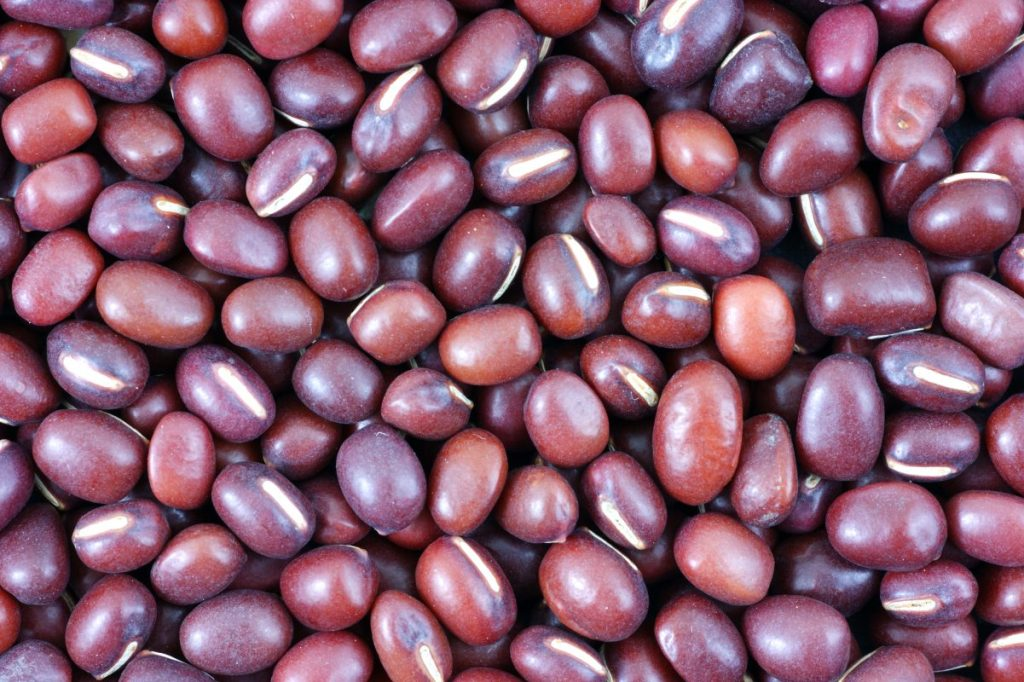 Small red bean or adzuki beans