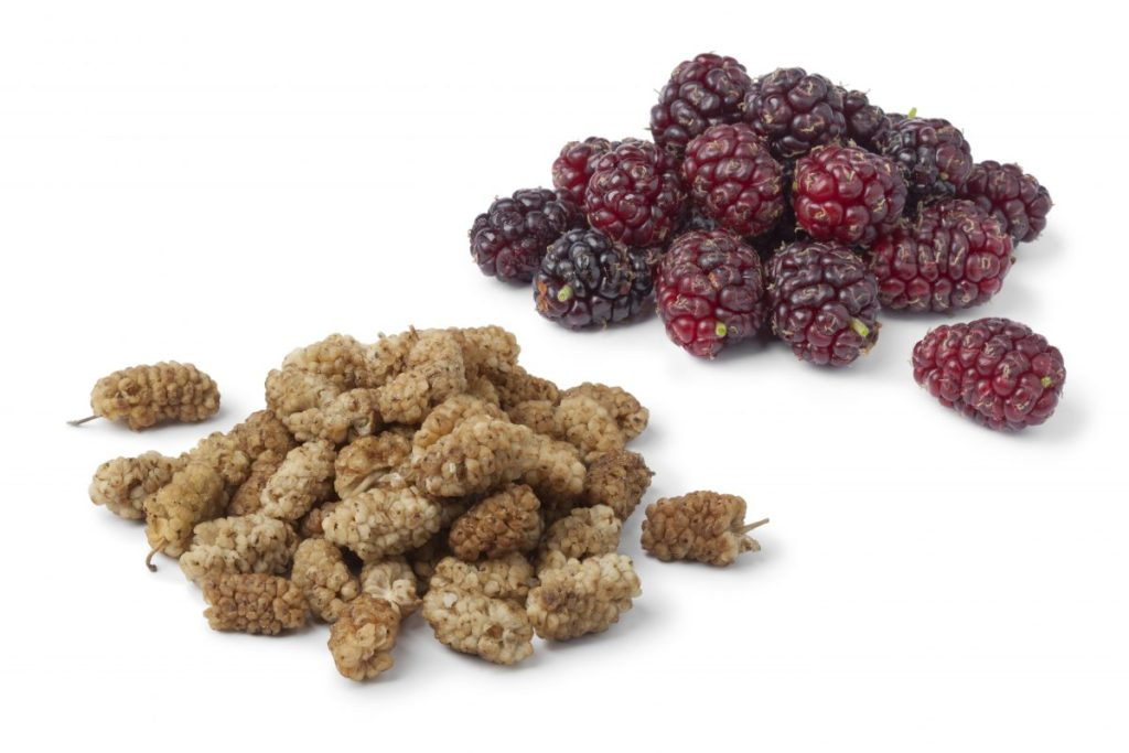 Fresh or dried mulberries help you boost your immune system to beat anxiety