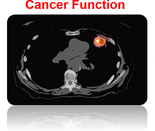 cancer-function