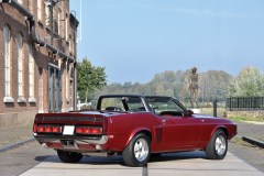 @1969 Shelby GT500 Convertible - 5