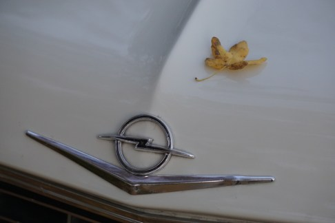 @Opel Admiral - 26