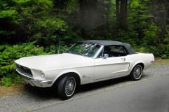 @68 Mustang 200 Cabrio - 3