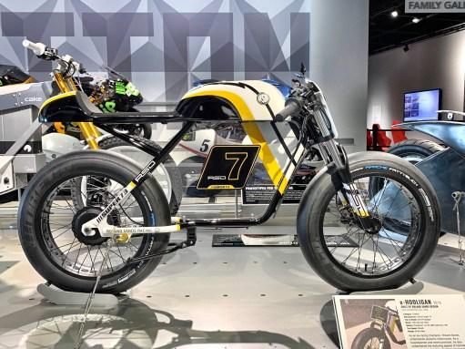 @e-bikes Petersen - 1 (1)