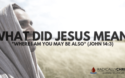 """What Did Jesus Mean: """"Where I Am You May Be Also"""" (John 14:3)"""