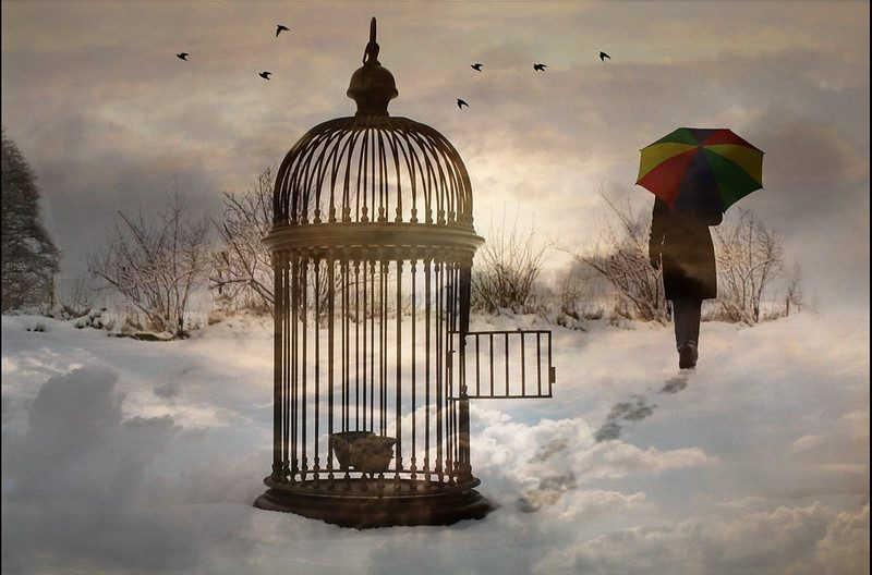 """Empty Cage""https://www.flickr.com/photos/h-k-d/3063566547"