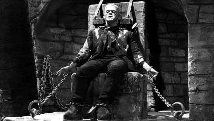 Frankenstein ha avuto una settantina di riproposizioni cinematografiche. La più famosa è il film di James Whale, del 1931.
