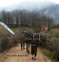 ngarkesa me dru