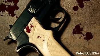 pistoleta veteplagosje dasma