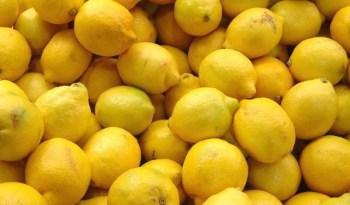 inspektoret asgjesojne limonat