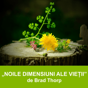 NOILE DIMENSIUNI ALE VIEȚII | Pastor Brad Thorp