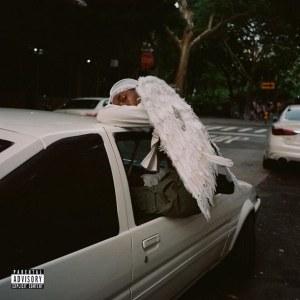 WRSU Negro Swan Review Image