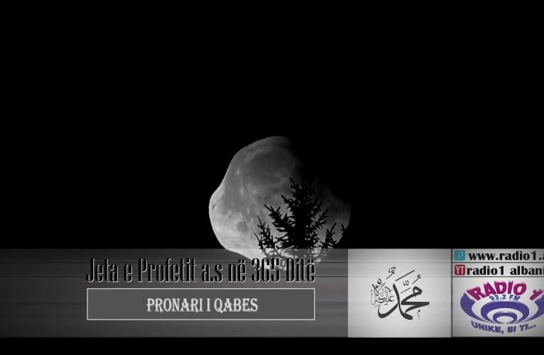 Profeti ne 365 dite 03 | Pronari i Qabes