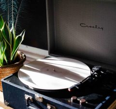 Record Player with cactus