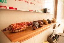 Snake River Seeds: corn