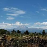 Ruta : De Longaví a la Cordillera