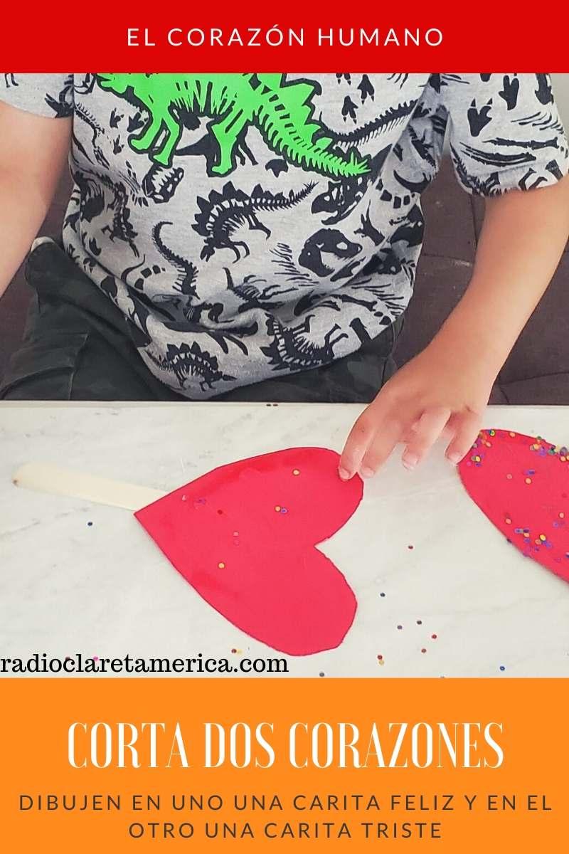 manualidades para aprender sobre el corazon humano para niños