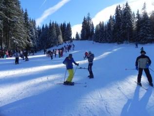 pârtiile de schi și săniuș