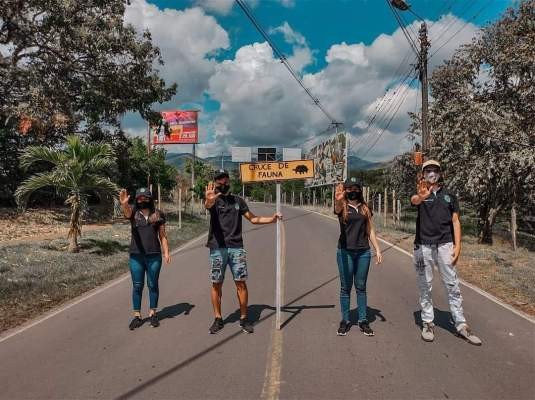 Jóvenes Colectivo Toro Verde
