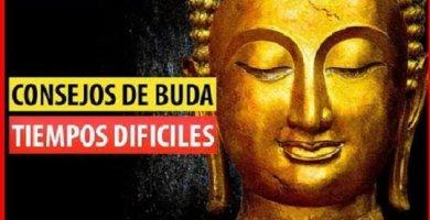 Consejos Budistas para