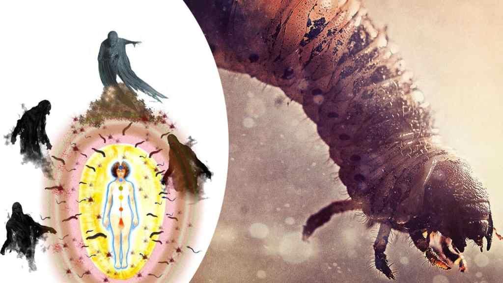 Larvas Astrales o Energéticas