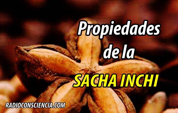 PROPIEDADES SACHA INCHI