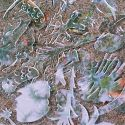 Kelle-Hibiscus-BrokenBubble-RadioDAISIE2