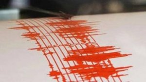 Cutremur cu magnitudinea 4,5 în zona Vrancea, resimțit și în Tulcea