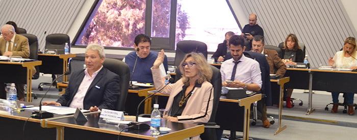 Diputados aprobó la designación de la nueva Defensora Civil de Santa Rosa