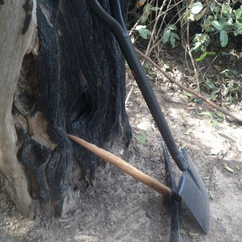 Broken pickaxe handle to be replaced with a cut branch