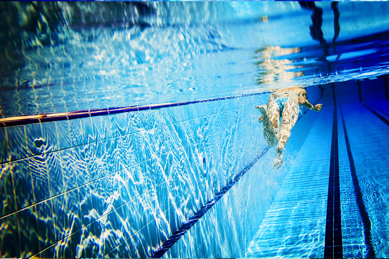 Guida alle piscine aperte in provincia