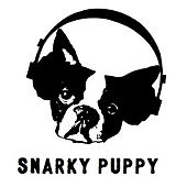 Snarky Puppy //  Terence Blanchard Group / 53. Internationales Jazzfestival Montreux 2019