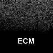 ECM Special Session – ECM? ECM! // Gianluici Trovesi & Gianni Coscia / Joe Lovano & Trio Tapestry