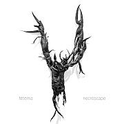 CD Tipp: tetema – necroscape / Ipecac Recordings