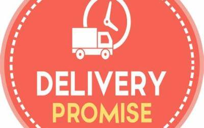 The Glittering Promise of Service Delivery