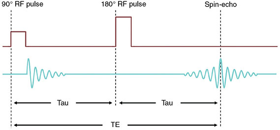 Diagram shows pulse sequence where two sets of pulses are displayed with dimensions of tau, TE, and tau.