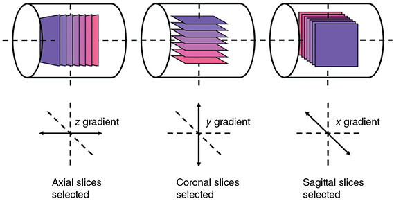 Diagrams show X, Y, and Z as slice selectors where first is axial slices selected, second is coronal slices selected, and third is sagittal slices selected.