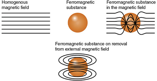 Diagram shows ferromagnetic substance in homogenous magnetic field having ferromagnetic substance, substance in magnetic field, and substance on removal from external magnetic field.