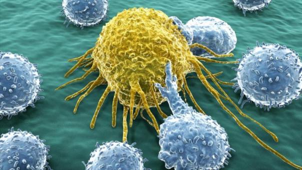 Virus modificados genéticamente atacan de forma selectiva a las células tumorales sin que las sanas se vean afectadas