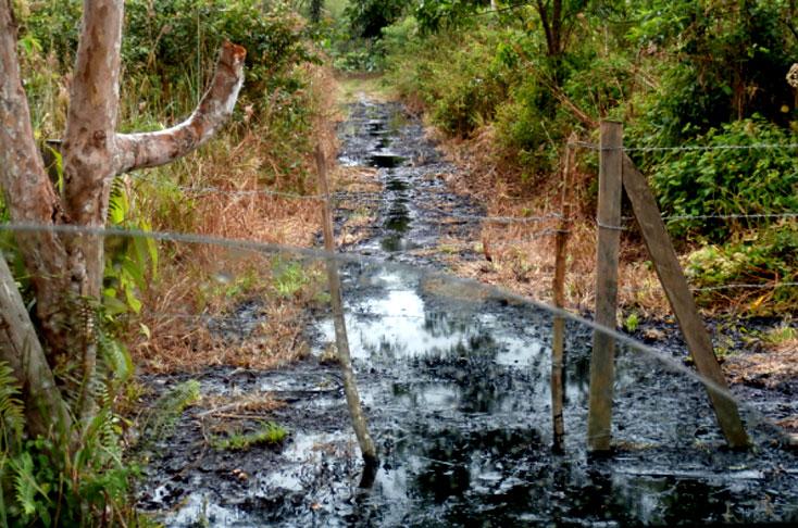 Comunidades indígenas y campesinas denuncian ante el embajador británico afectaciones de empresa Amerisur - derrame-de-petroleo-putumay_4