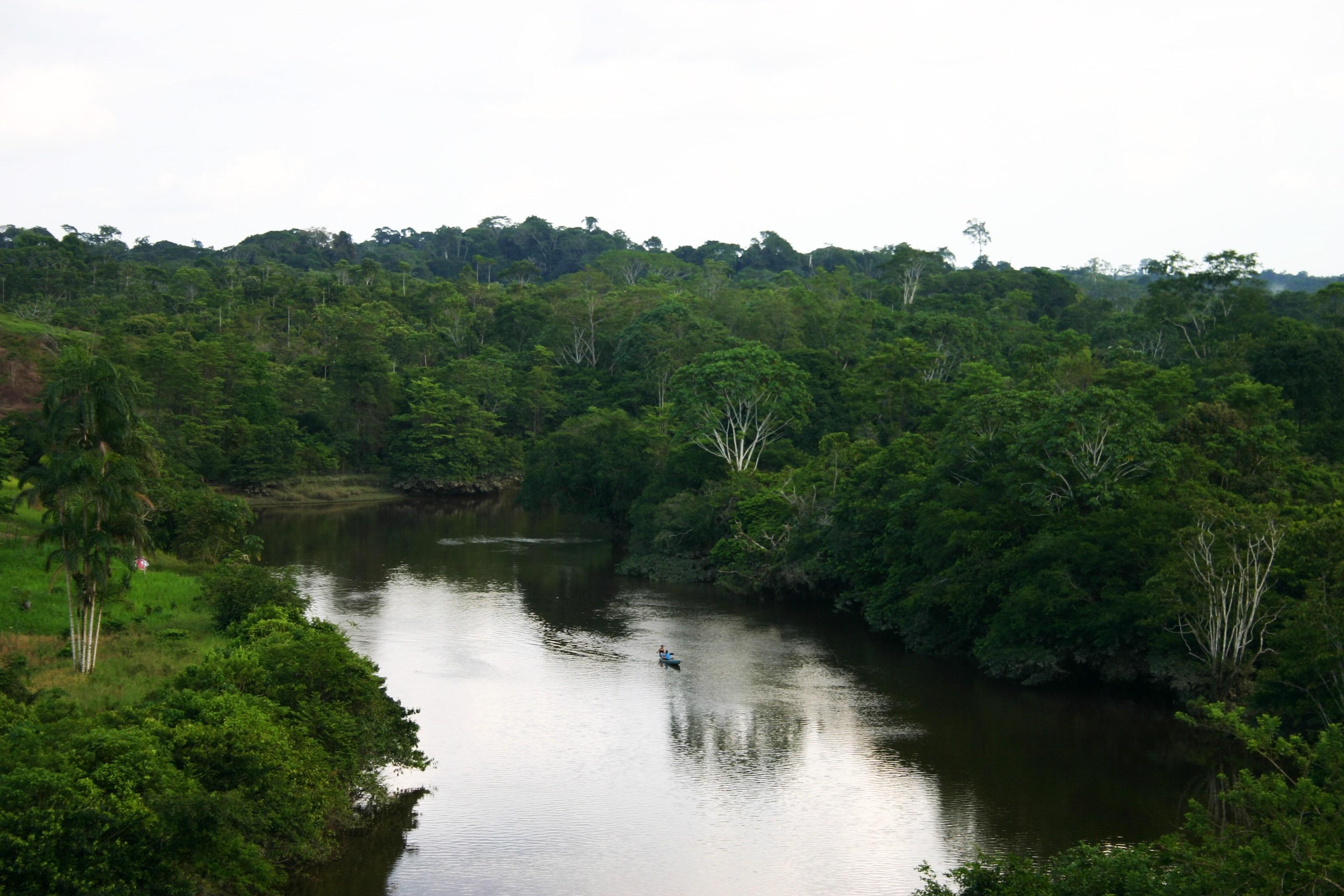 ZRCPA en movilización permanente ante incumplimiento de gobierno - Zona-de-Reserva-Campesina-Perla-Amazónica-ZRCPA