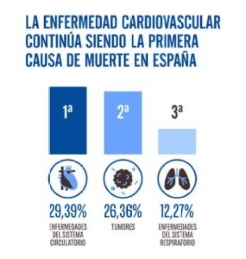 Presidente de los cardiólogos: El 75% de las insuficiencias cardíacas se evitarían con el control de la hipertensión - infografía-cardiovasculares-285x300