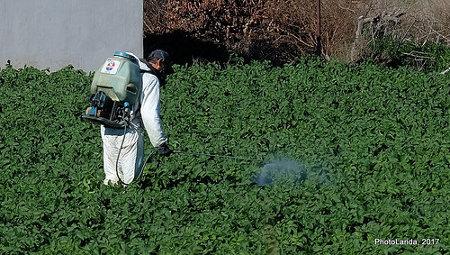 Impactante estudio muestra que los herbicidas de glifosato contienen niveles tóxicos de arsénico - hervicida