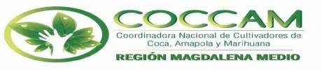 Gobierno incumple acuerdos de sustitución con campesinos del Magdalena Medio - cocam-mm
