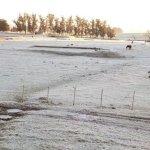 Desde este martes se prevé una ola de frío polar que afecta a todo Uruguay