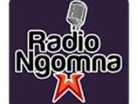 Photo of تحميل تطبيق راديو نجومنا للبث الإذاعى