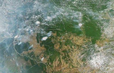 El discurso promotor de la quema del Amazonas