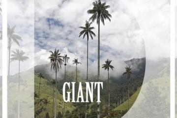 giant_dari_radiopoint