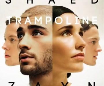 SHAED-ZAYN-Trampoline-radiopoint