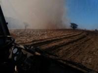 incendii vegetatie 6